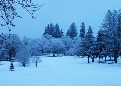 Corvallis Club 8th hole tee box snow winter