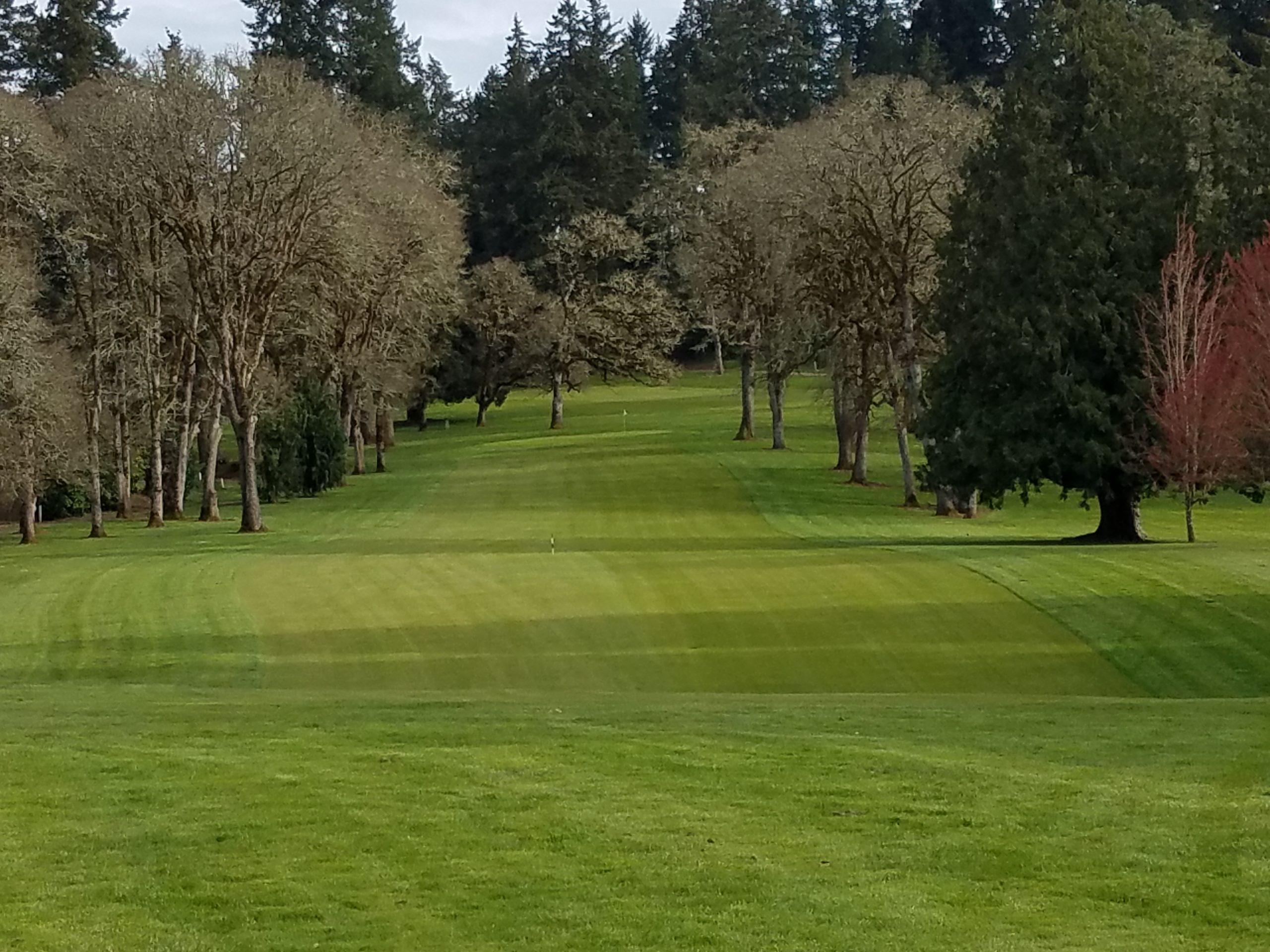 Corvallis Club 10th hole fairway